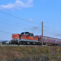 DD51-875号機がフルコンで関西線を下る。