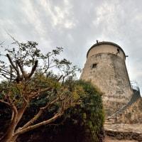 コルテラッツォの塔…ノーラ