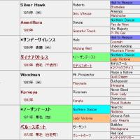 中山5R 新馬戦アプローチ