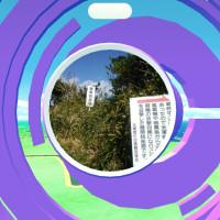 太東岬にポケモン