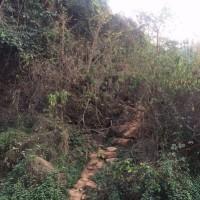 ミヤンマーと国境を接する臨滄市鎮康南傘