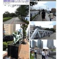 第31回 桜木町から赤煉瓦(軌道)歩きと中華街