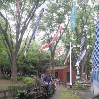 世田谷公園のミニSL、5月5日(金・祝)は乗車無料