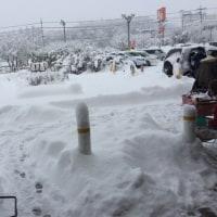 雪かきの日!