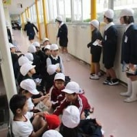 2/24 たてわり班のピカピカ大掃除