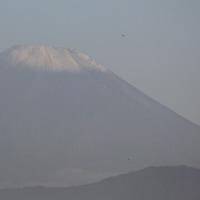 富士山初冠雪 ・ 我が家の冬支度