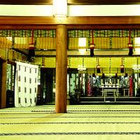 初孫のお宮詣り