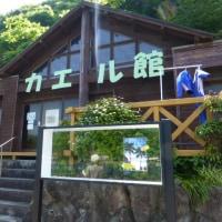 体操教室の伊豆旅行