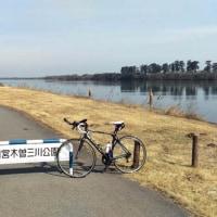 連日の木曽三川公園トレーニング