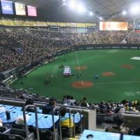 初の札幌ドーム~ユニフォーム着て日ハム戦観戦