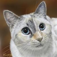 Rosieちゃん(猫絵で)