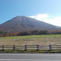 大山の紅葉も終盤です