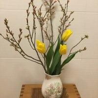 お花で春を感じる