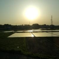 田植え間近ー朝夕の風景