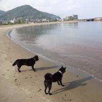 長浜で走って~