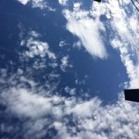 雨あがりの空に雲⛅ マナの店先で💛