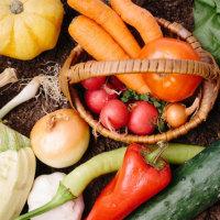 妊娠中なら快適スルン、普段は緑黄色野菜のトマトとカボチャの料理