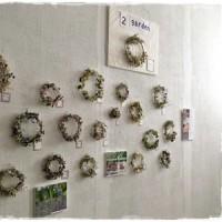フォース Nature's -晶- リースの個展
