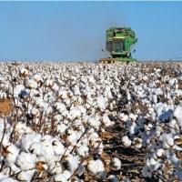 アメリカの産業  - 農業