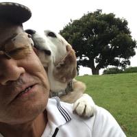 おじさんとコタロー