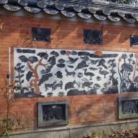 花博記念公園鶴見緑地 「咲くやこの花館」 番外編 (大阪市)