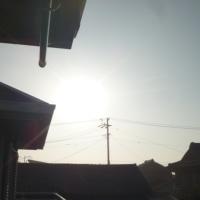 気温乱高下の高の日。