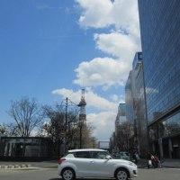 【気まぐれ写真館】 「桜の開花宣言」があった札幌