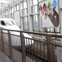 寝不足で坂出駅を乗り越し高松駅までいきました
