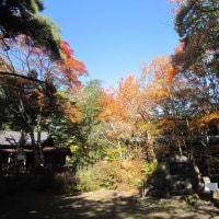 10/24(月)のPACニュース~追分&軽井沢周辺の情報