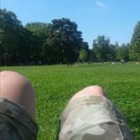 公園 太陽 読書