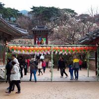 仏国寺(プルグッサ)・お参り☆韓国の世界遺産・慶州から
