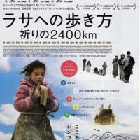 映画「ラサへの歩き方~祈りの2400km~」―恐るべし現代の巡礼の虚飾なき旅路の記録―