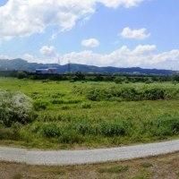庄川右岸 広大な自然河川敷   160626(日)