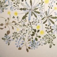 森野美紗子さんの展覧会「春のかけら」開催中です。