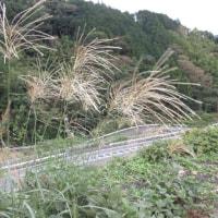 駿河の国・宇津の山辺を行く