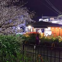 夜桜 散策 夙川~苦楽園口 いつもの蕎麦屋
