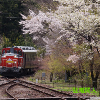 花の駅に汽車来たる