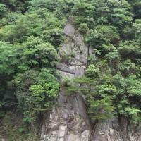 武庫川の渓流沿いで・・・