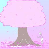 散りはじめた桜…