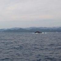 東京湾 少しだけアジ釣り 出港