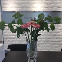 今週のお花です!