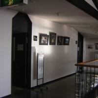 旭東公にてカメラクラブの作品展を楽しむ