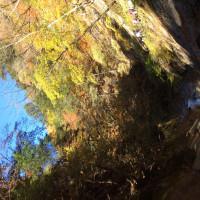 西沢渓谷&ほったらかし温泉
