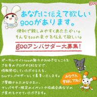 第1回 gooアンバサダーミーティング(2014年12月3日)のご報告。#welovegoo #最初はgoo