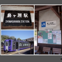 JR関西本線 ・ 島ヶ原 駅