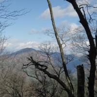 冬枯れの室尾山へ