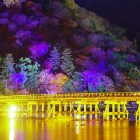京都嵐山の輝き