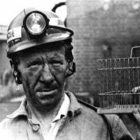 共謀罪 一般人の人権侵害の危険はもちろん許せないが、「炭鉱のカナリア」を見捨ててはいけない。
