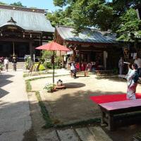 6月18日(土)19日(日)お抹茶ガールズと日本舞踊