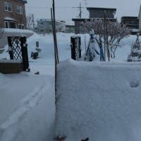 週末は雪が降った(It snowed on the weekend)